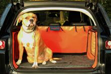 Hundematte-Hatchbed